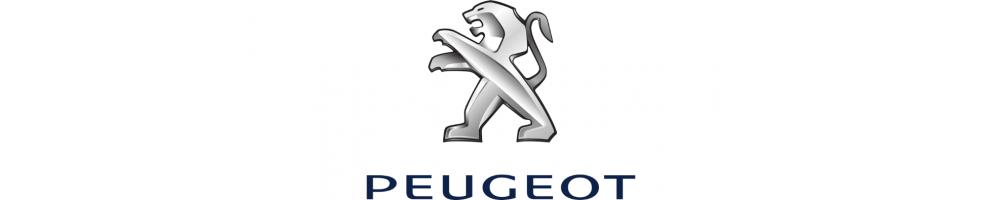 Peugeot   Lucidatura faro carrozzeria - Accessori - Kit LED