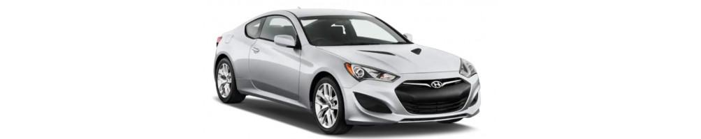 Lucidatura fari , kit led , sensori di parcheggio Hyundai